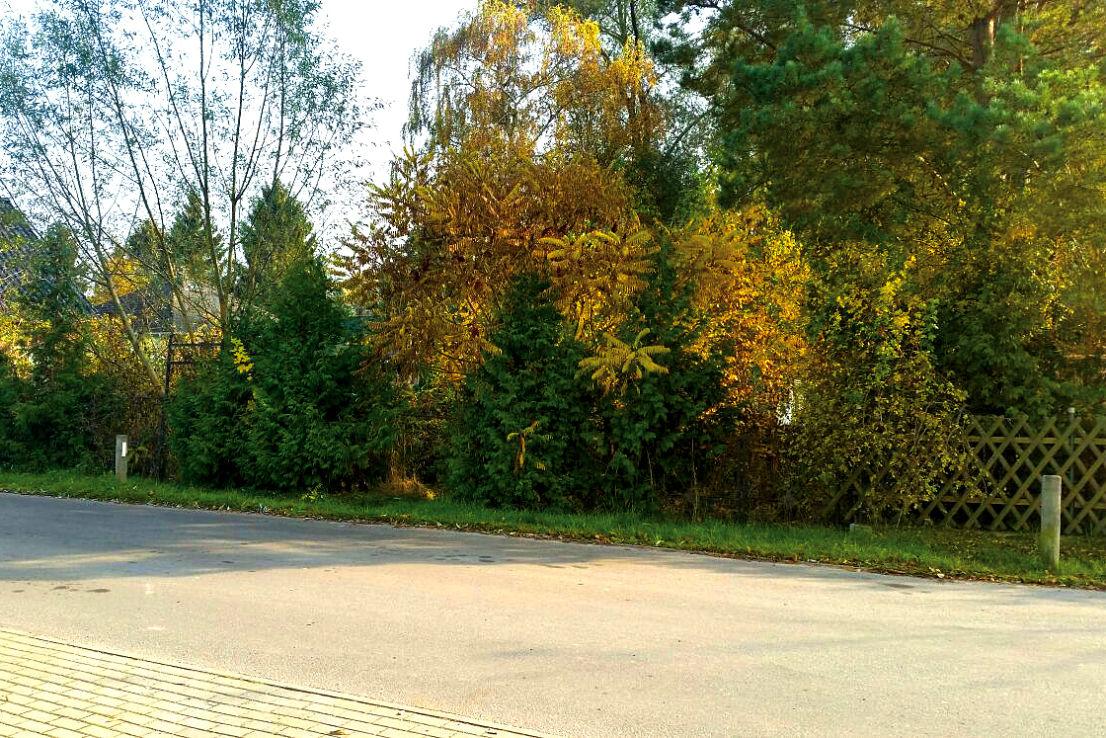 Grundstück -- Oranienburg - schönes Grundstück zum Wohnen