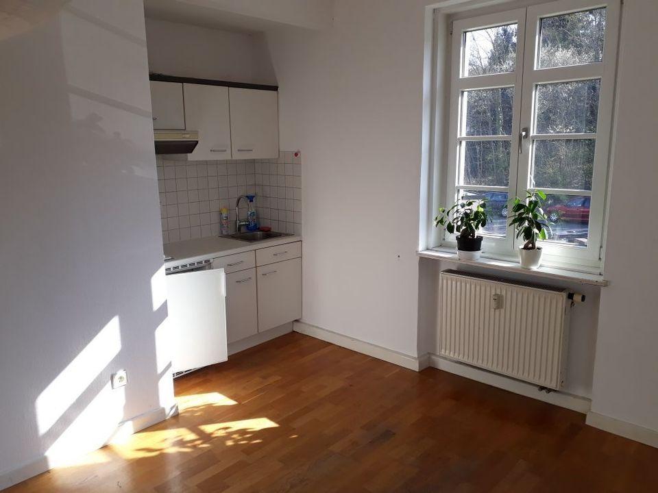 1 Zimmer Wohnung Zu Vermieten Wurzburg Bayern Mapio Net