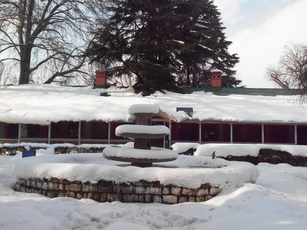 Degree College Boys Anantnag Snow Covered