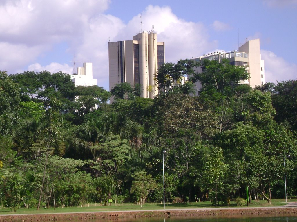 Edifícios vistos do bosque