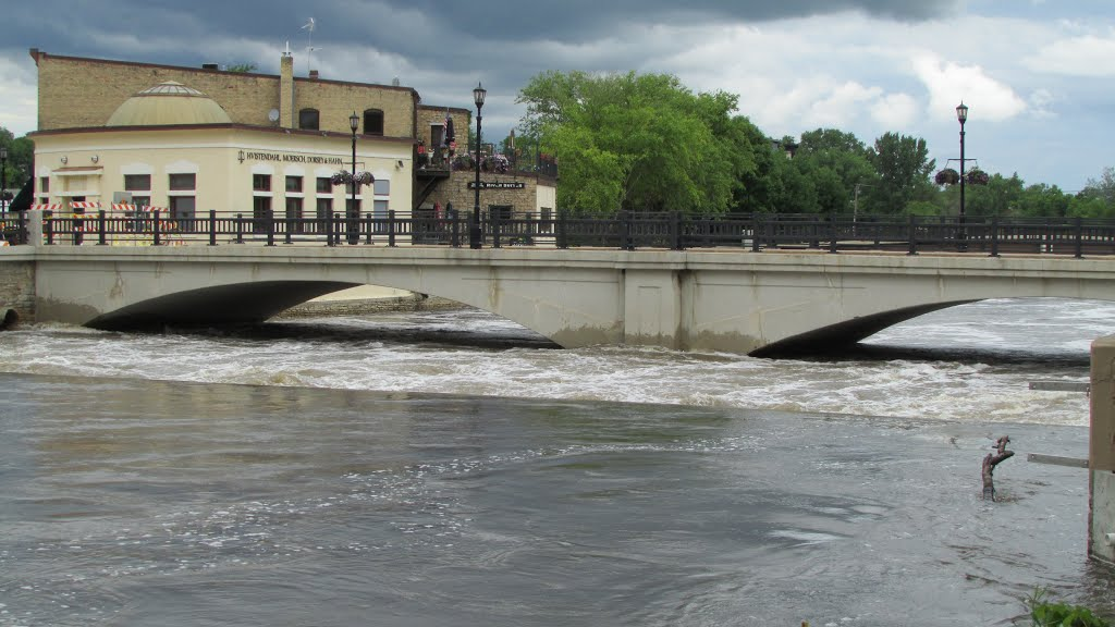 Spring 2014  flooding Cannon River Northfield MN USA June 2014