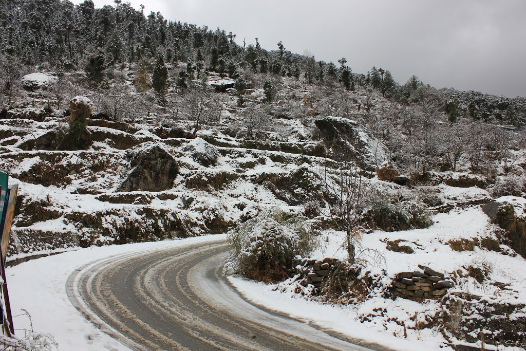 On The Way to Auli