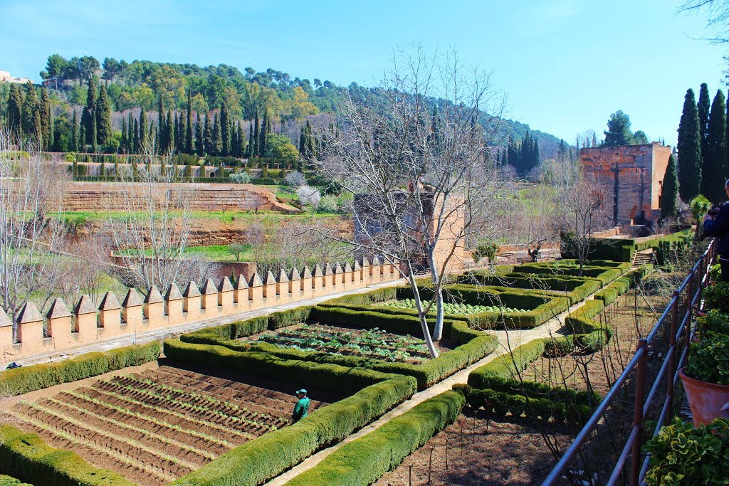 The Spring garden at the Generalife in the Alhambra, Granada, Spain.