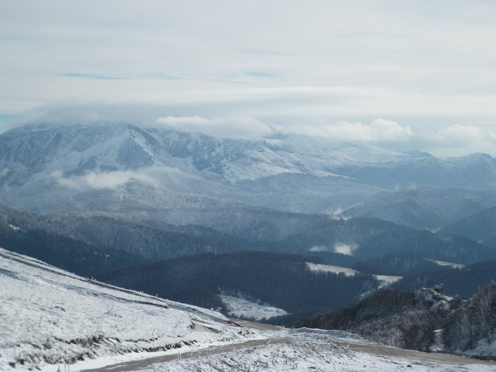 View of snow capped mountains and forests from Bjelašnica, Trnovo, Bosnia & Herzegovina/Bosna i Hercegovina