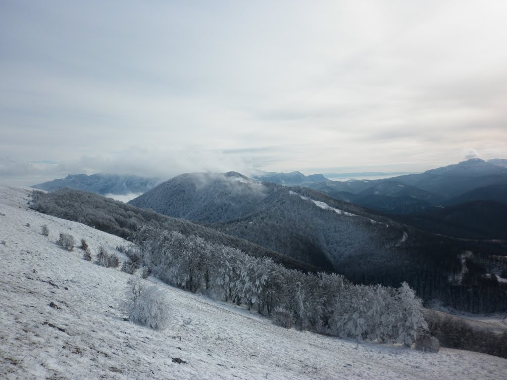 View of the snow covered forests and mountains from  Bjelašnica, Trnovo, Bosnia & Herzegovina/Bosna i Hercegovina