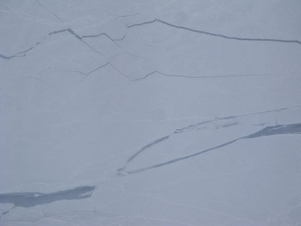 Exact the north pole on may, the 1st, 2008, 2.21 pm