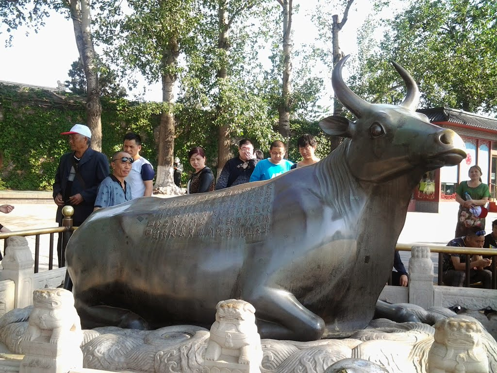 Bronze Ox (Tongniu) On the East Causeway of the Kunming Lake and close to the Seventeen-Arch Bridge, there is an almost life-sized  bronze ox laying beside the water. It was sculptured in 1775 and given the name 'Golden Ox' as it was made of bronze and pl