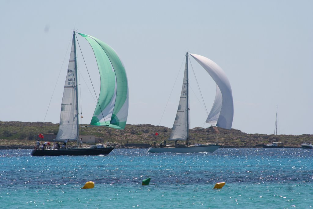 the sailing race
