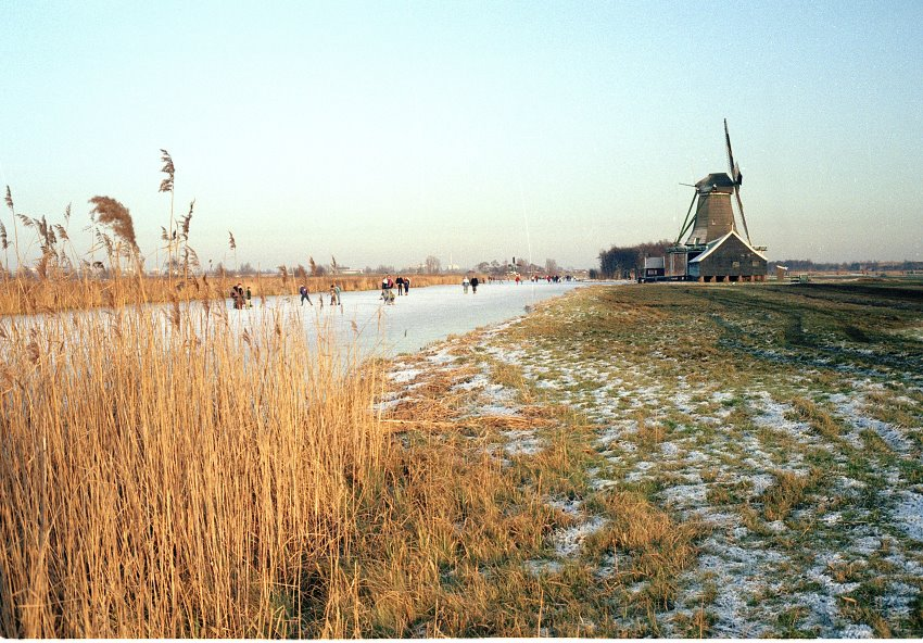 Winter in Westzaan Weelsloot