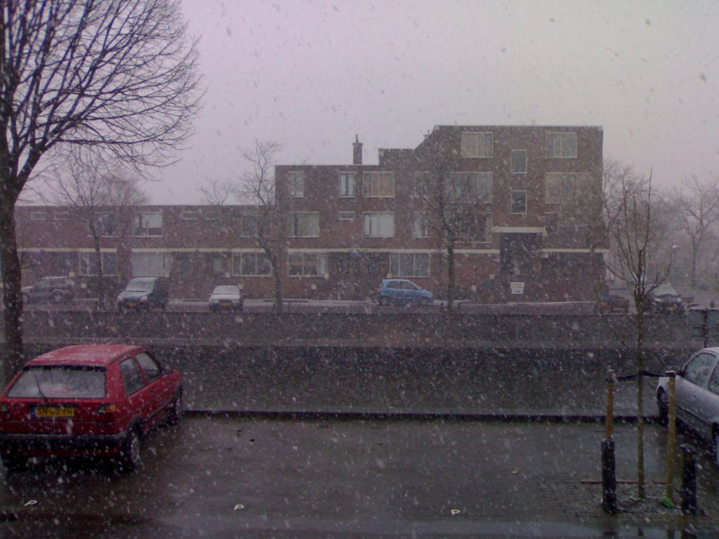 The start of spring on the Westkade :-(