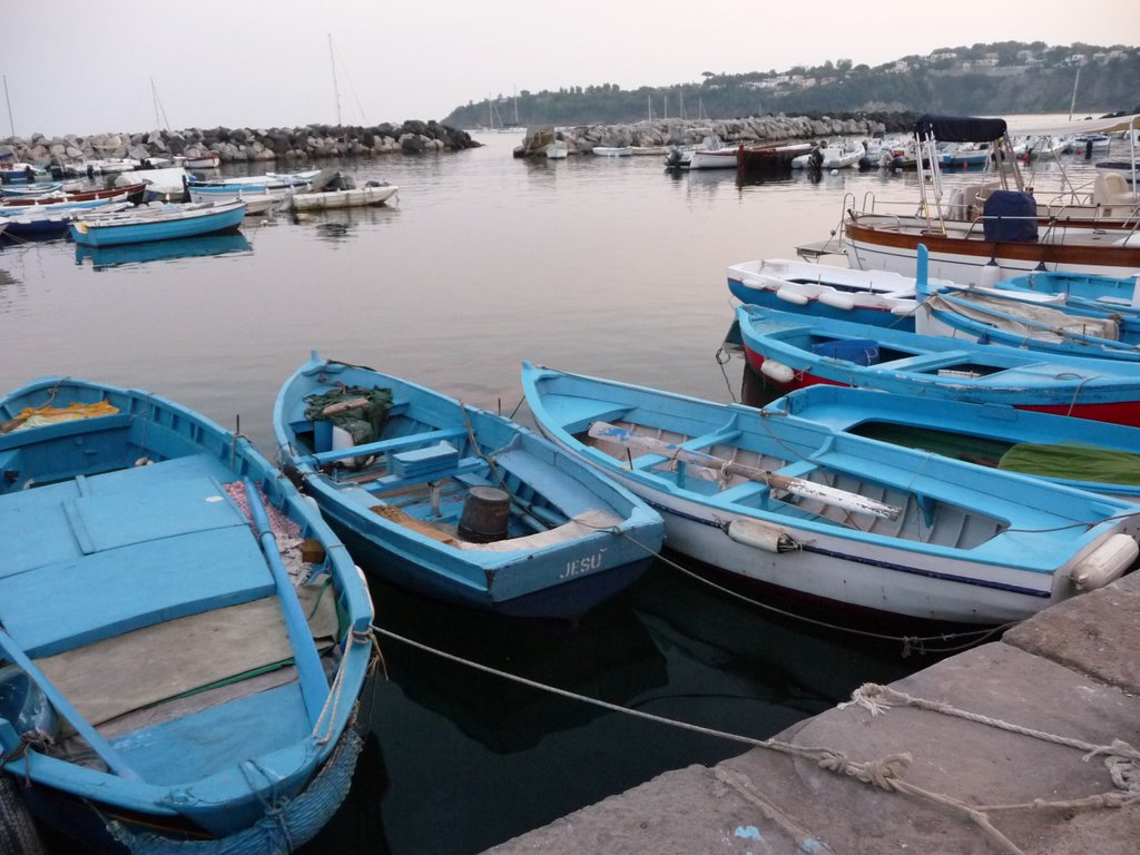 Blue boats in the harbour July 2008