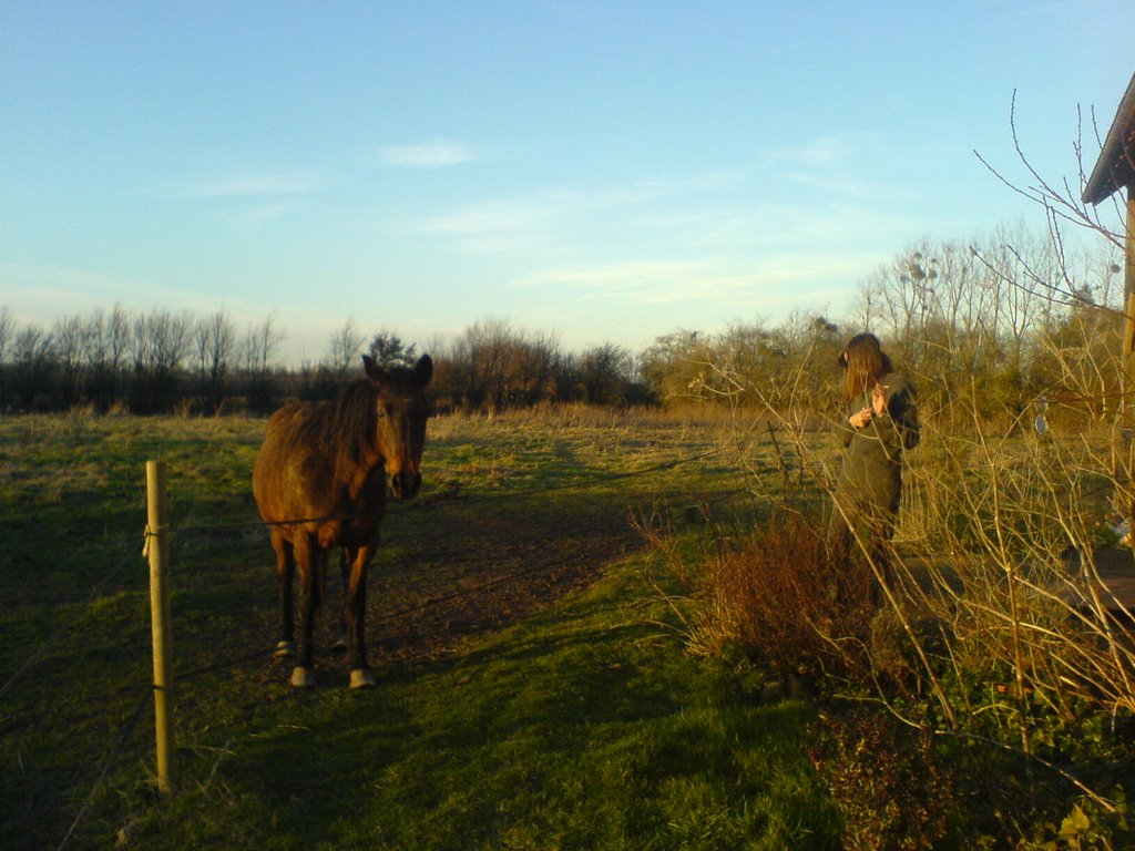 She talks to the horse