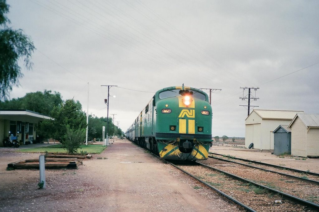 Indian-Pacific, @ Cook 1988