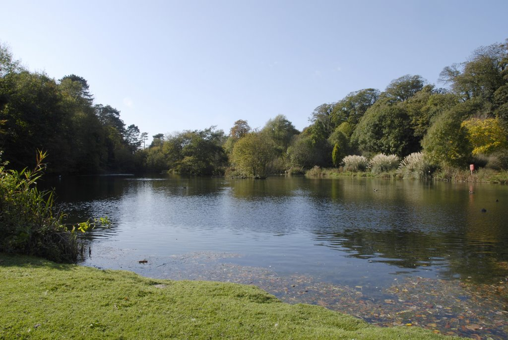 The lake at Russell Gardens, Kent