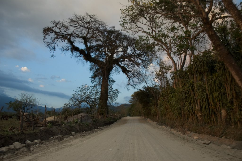 Driving up the hills in Suchitepéquez, Guatemala (end of the world, I thought then...)