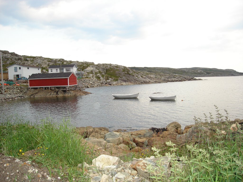 Lord's Cove Fogo Newfoundland