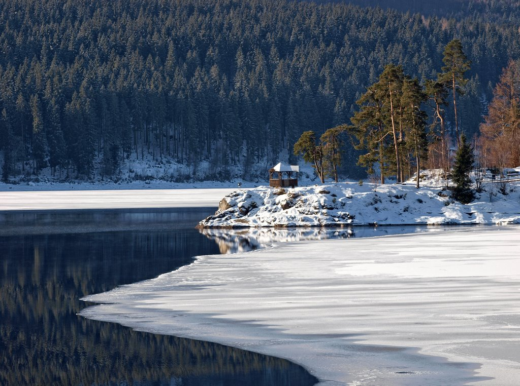 Winter am Schluchsee