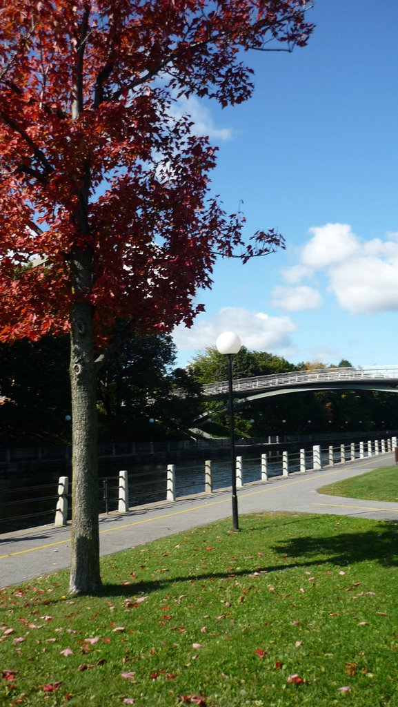 Early Fall On Rideau Canal