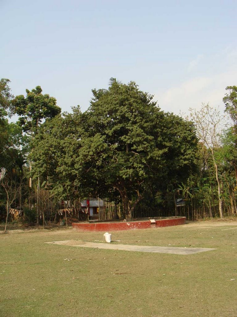 Father-in-law's house of Rabindra nath tagor  The nobel