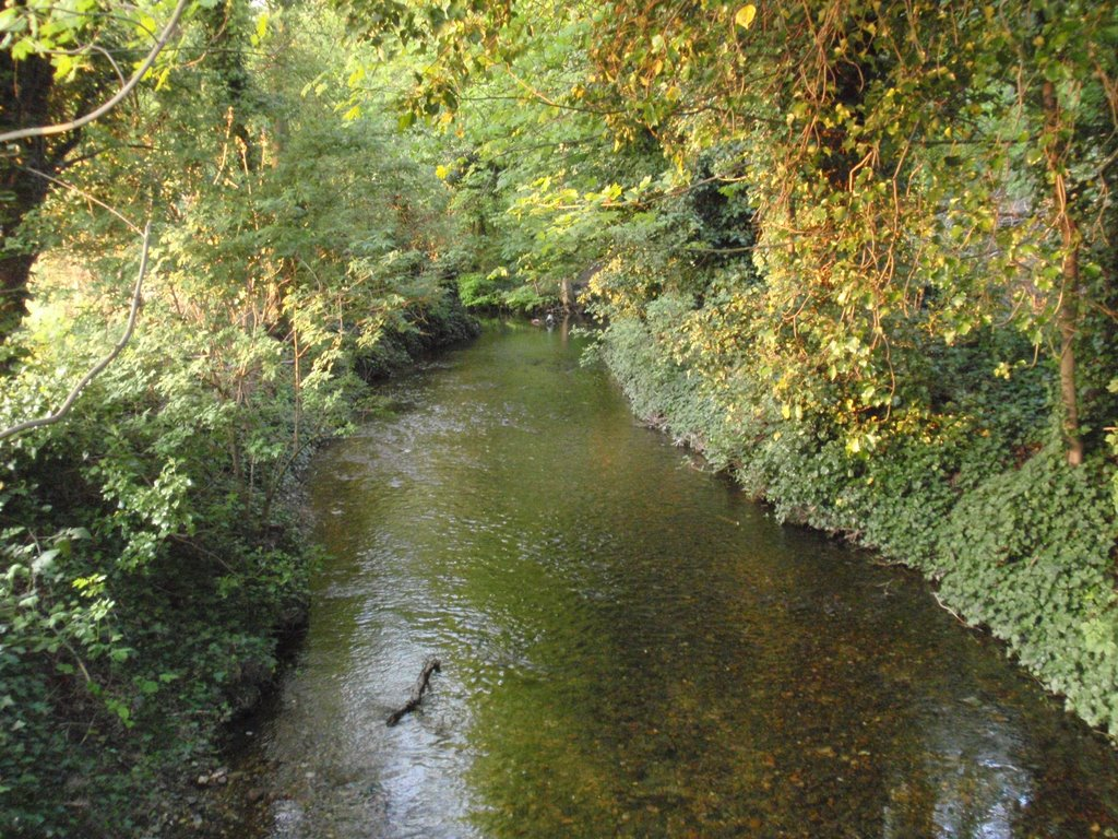 The Darenth River