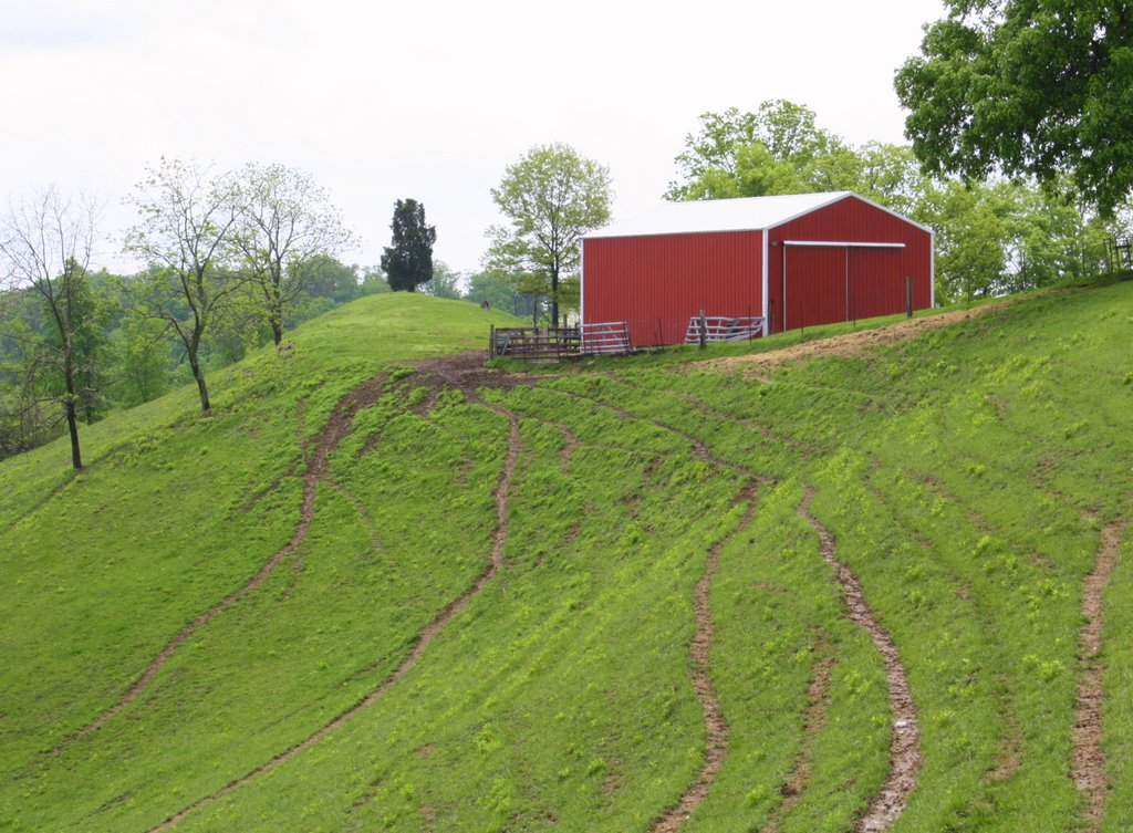 Soggy Sod, Red Barn, Red House