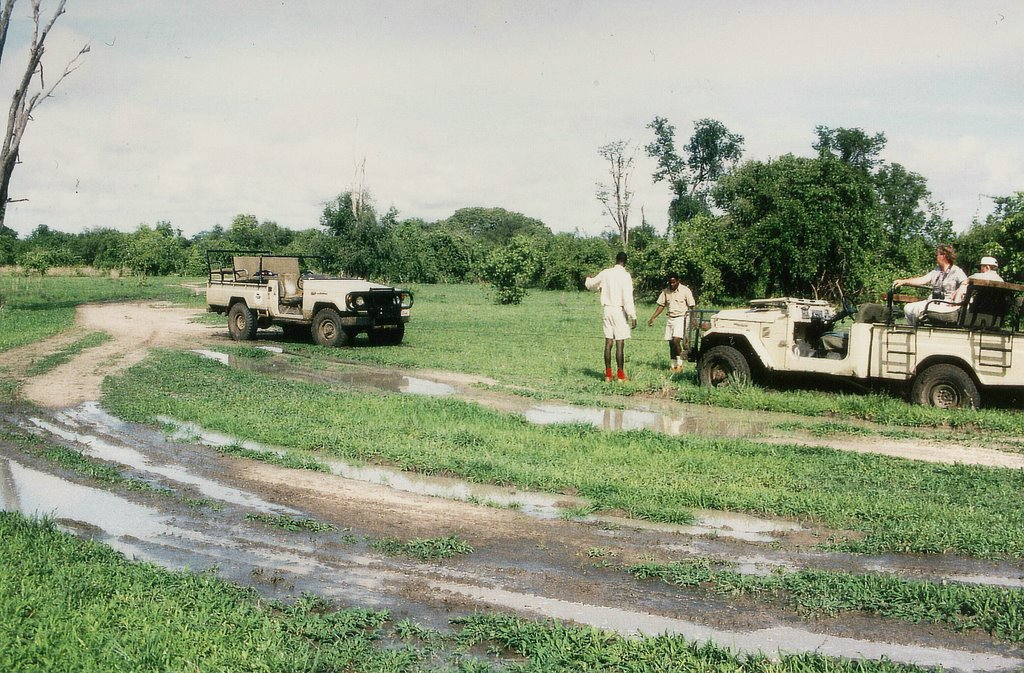 Zambia, South Luangwa N. P., 4x4 Stuck in the Mud, winching Toyota Land Cruisers (the Wildlife Camp had the better Driver)