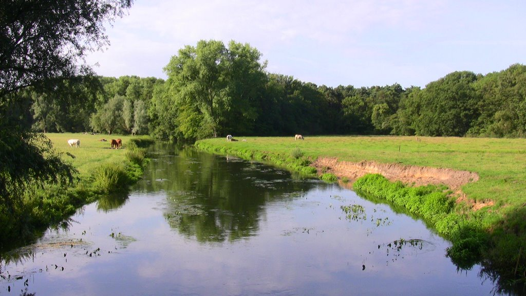 Landscape with river the Dommel