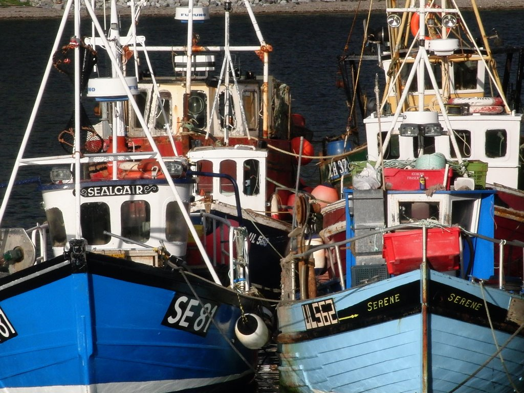 Ullapool, Fischer Boats in the Harbour