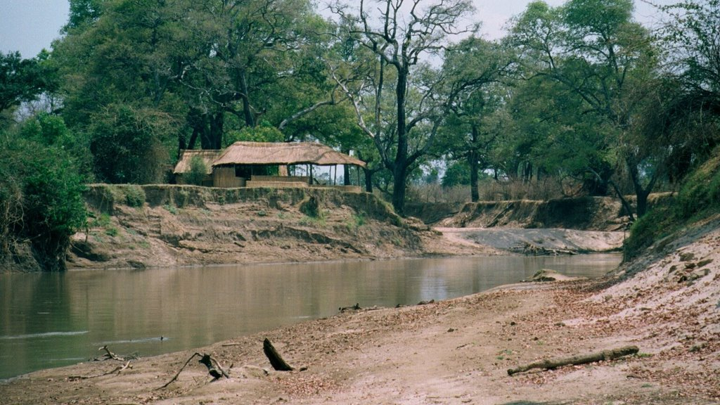 Chikoko Camp in South Luangwa National Park