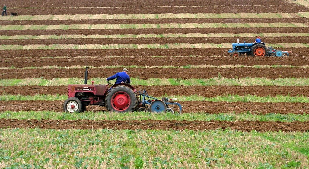 East Kent Ploughing Match Old Court Farm