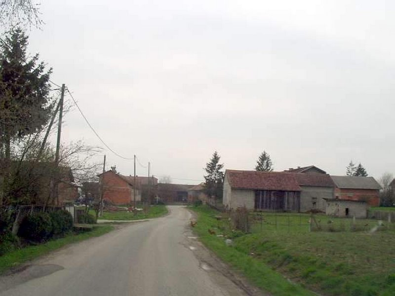 Negovec - Main Road