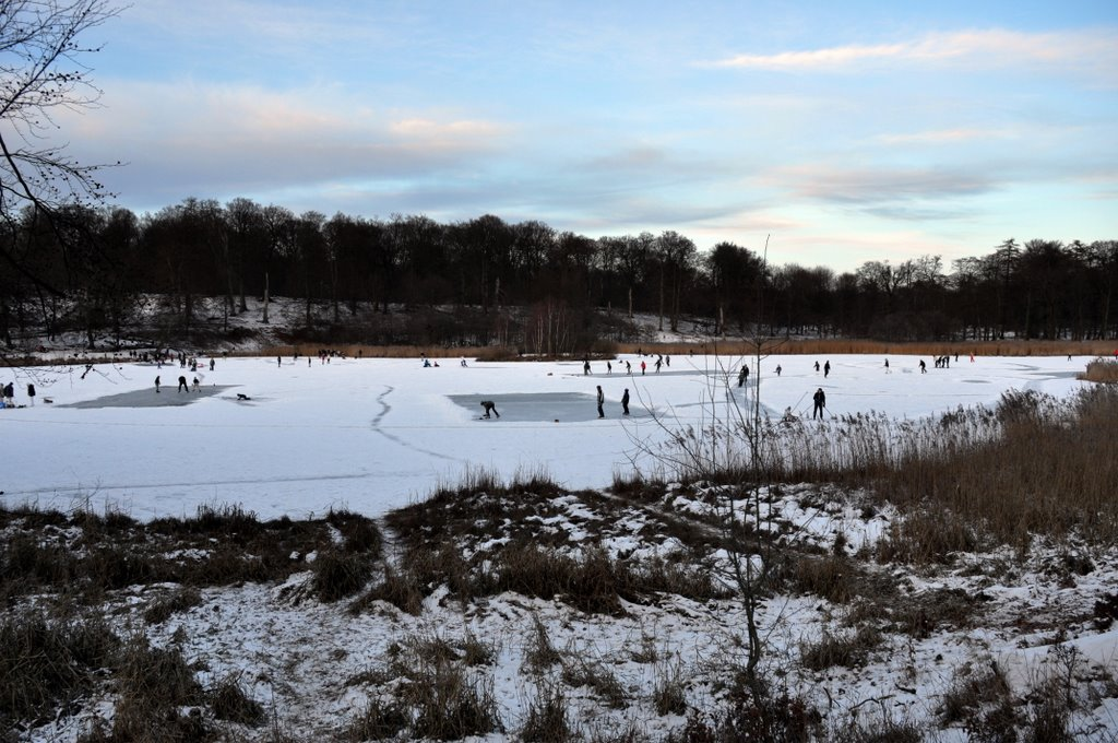 Hockeyfields on the lake
