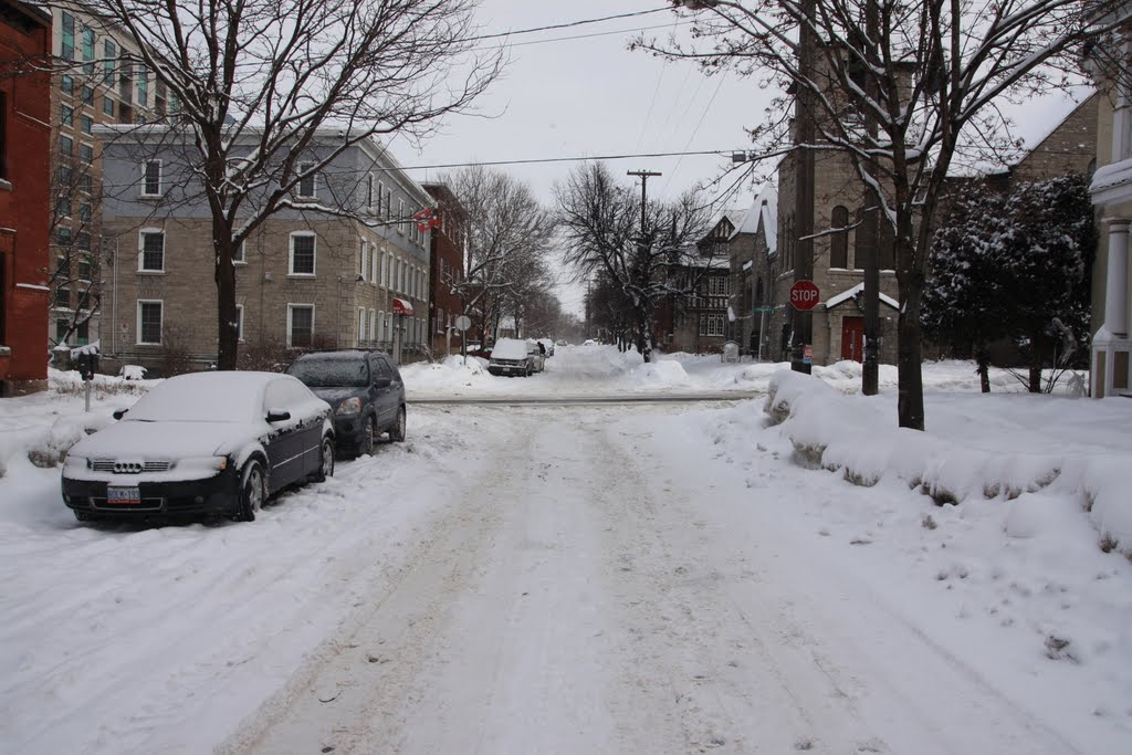 Daly Ave