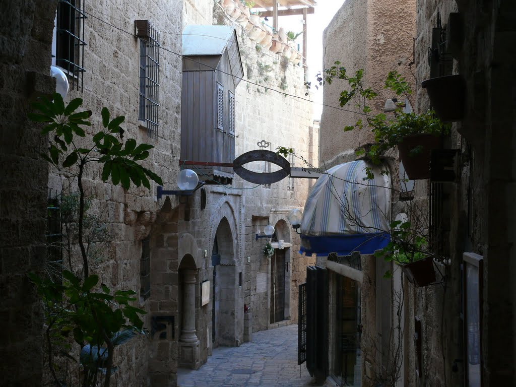 jaffo, old city alley