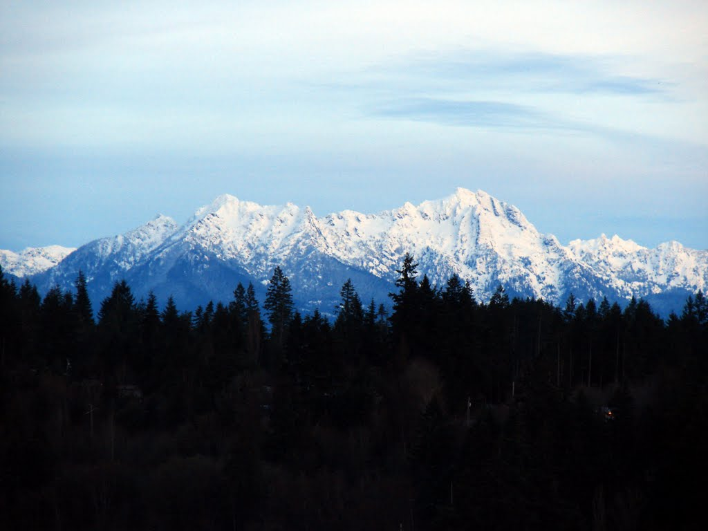 Olympic Mountains seen from Shelton