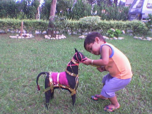 Karn playing with horse