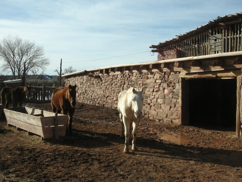 Corral in back of the  Hubbel Trading Post AZ