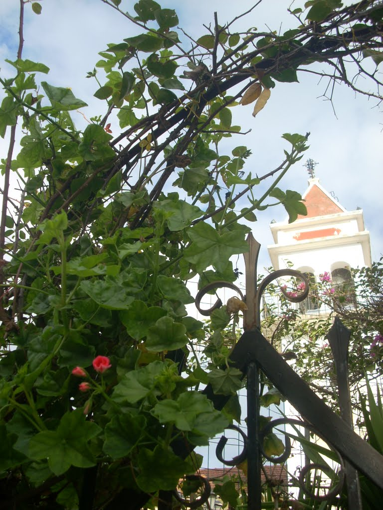Bell tower and flowers (Vanato)