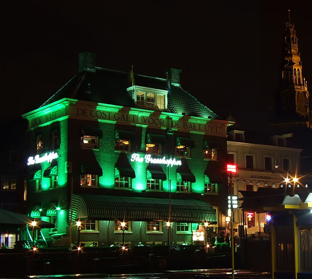 The Grasshopper by night