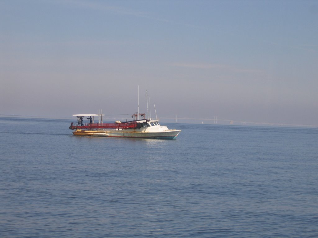 Dredging for oysters