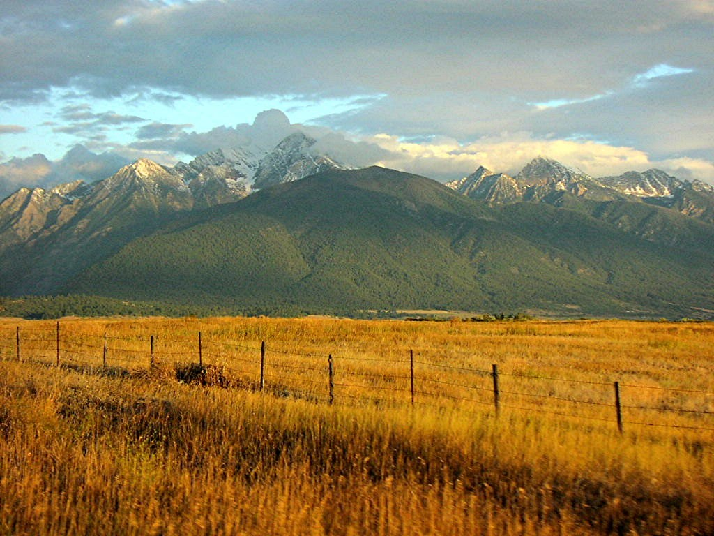 Amber Waves Of Grain With Mountain Majesty Mapio Net