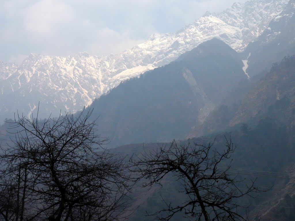 Early Morning View from Lachung Valley