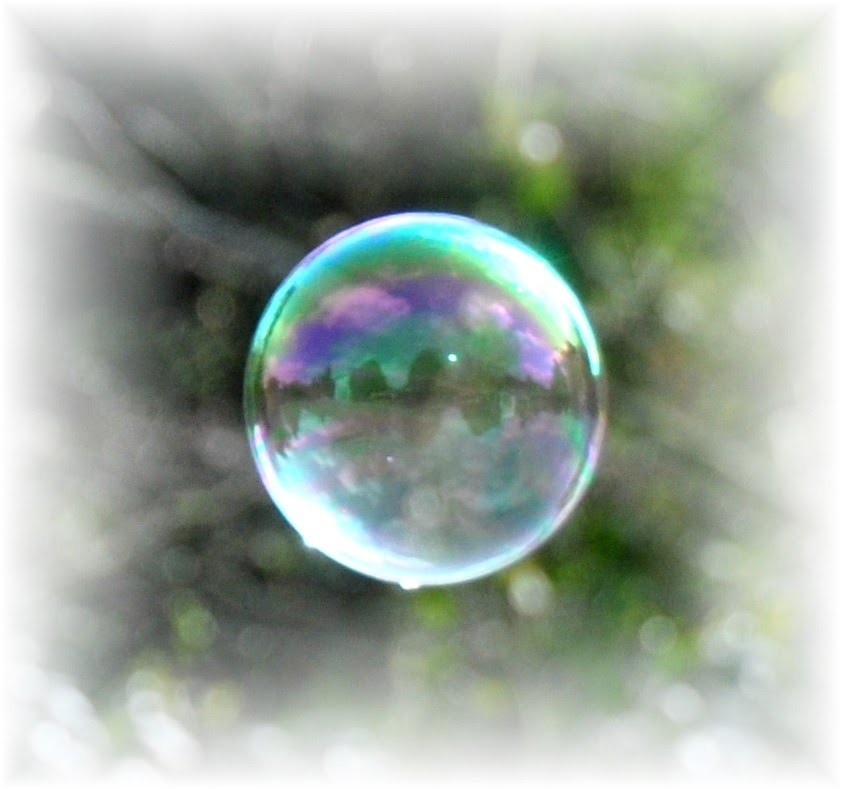 Close up  and reflection of a soap bubble [Kearsney Abbey]
