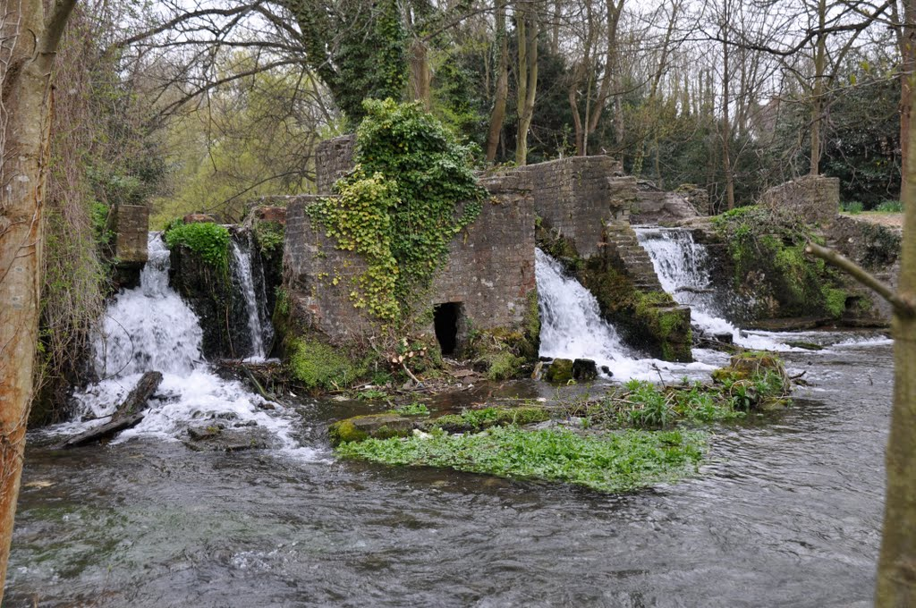 Water Falls  [Abbey Grounds]