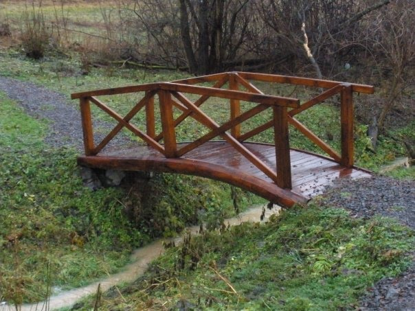 Bridge at the mineral water stream