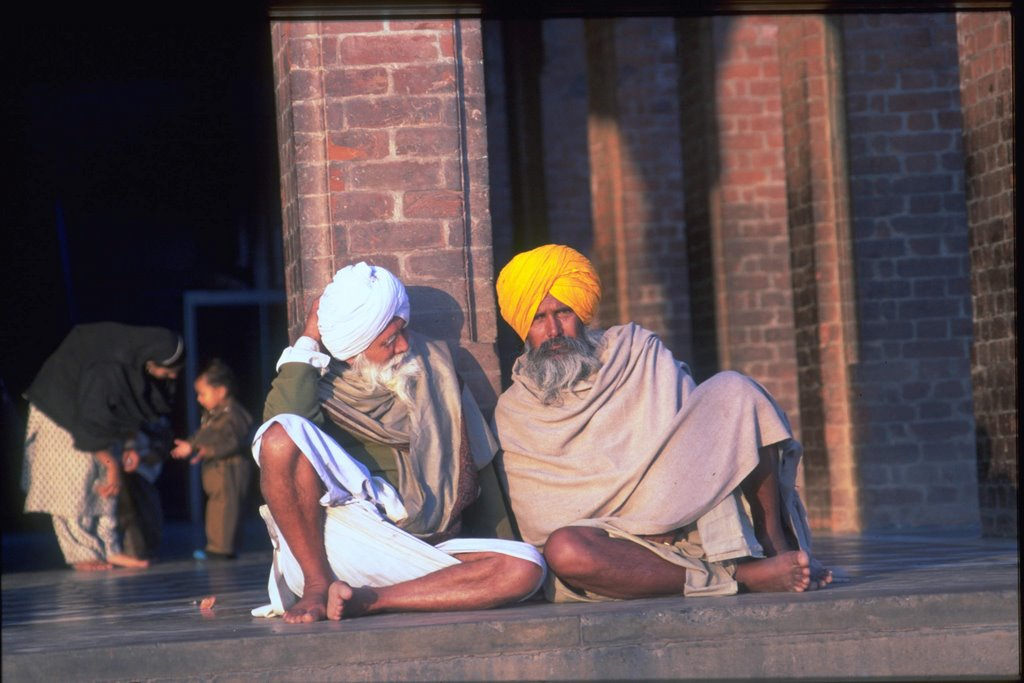 sikhs in golden temple, amritsar , india