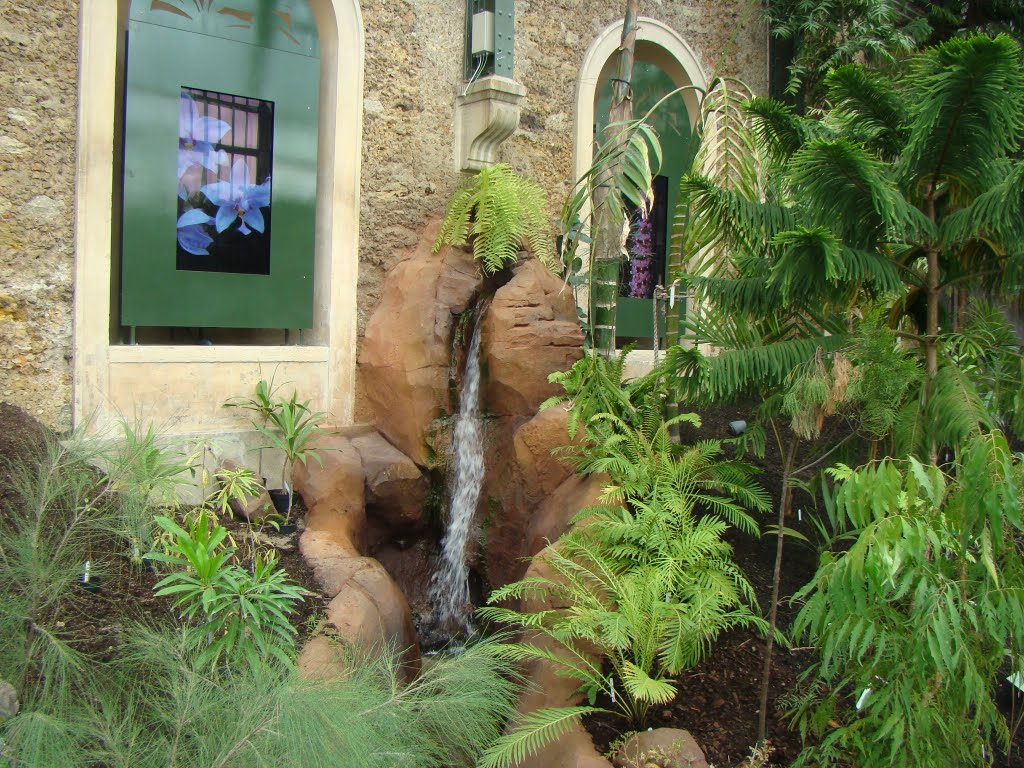 Paris'Museum (5ème ): Exotic fountain in equatorial greenhouse by ♥ Cathy Cotte ♥