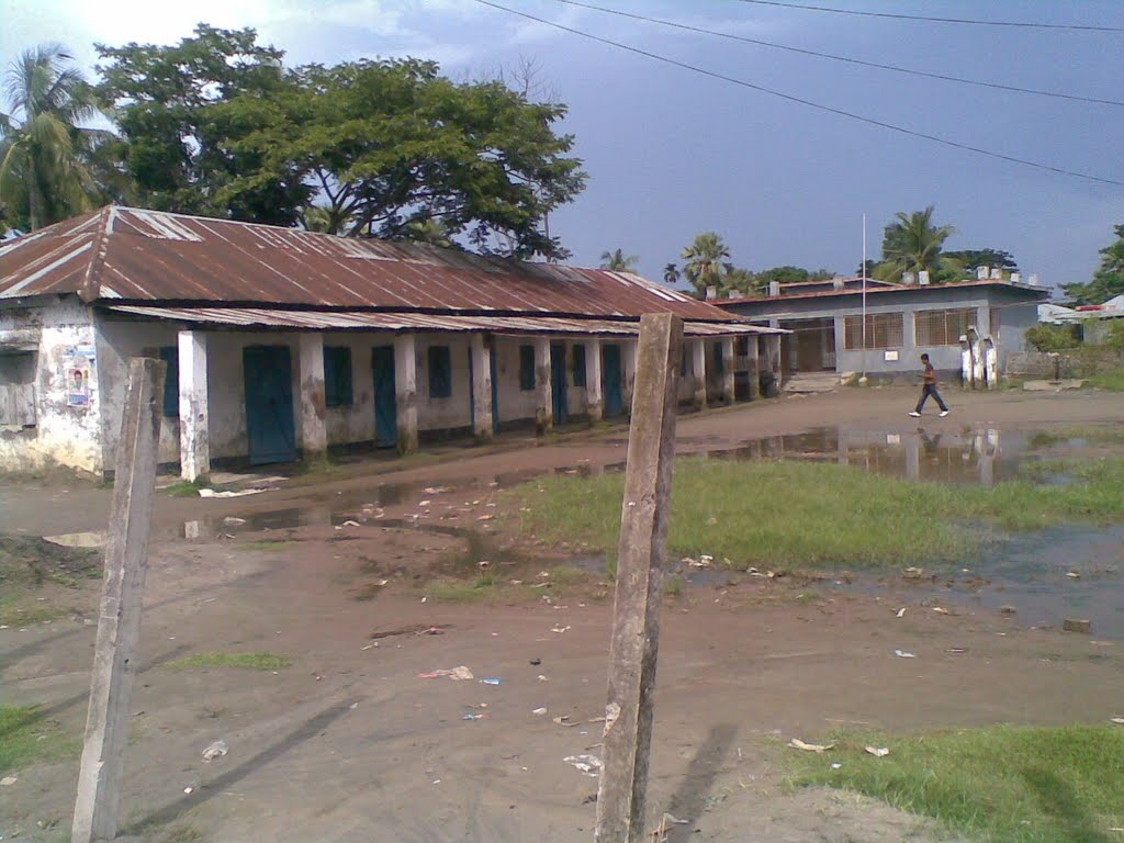 Narayanpur Primary School, Matlab by M. Shahjahan