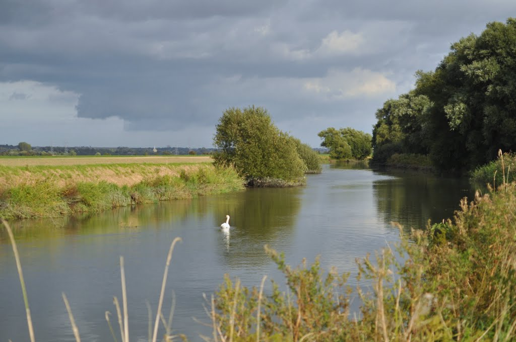 The River Stour in the Isle of Thanet