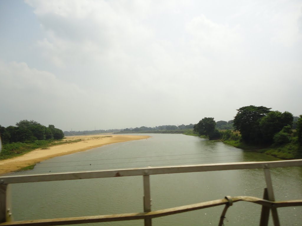 Daya River From Bhubaneswar Puri Road